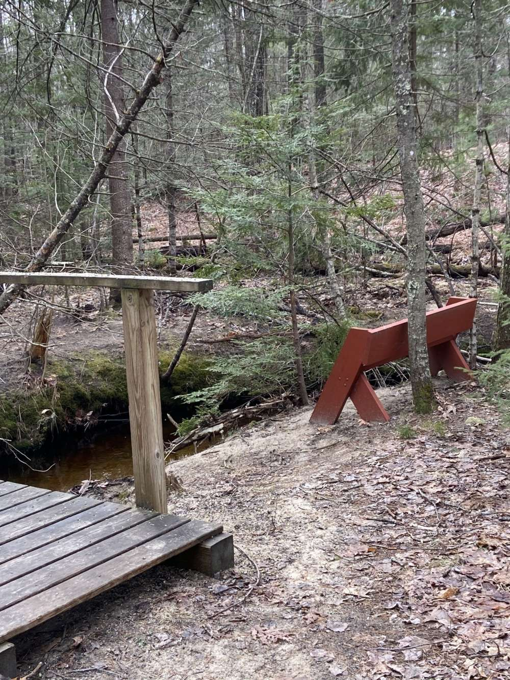 A bench and footbridge over a stream in a mixed forest during early spring.