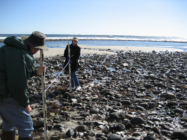 Laudholm Beach Volunteers