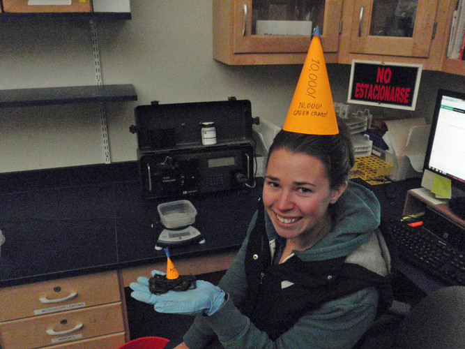 A brief celebration was had at the 10,000th crab milestone. Party hats for all!