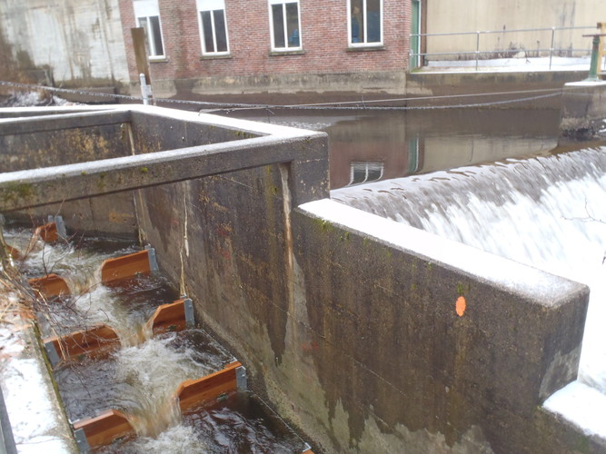 Branch Brook fish ladder. Click to read Jacob Aman's about the project.