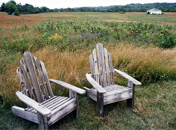 Adirondack chairs with open field beyond.