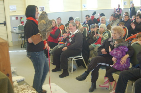 The crowd enjoys a great horned owl from the Center for Wildlife