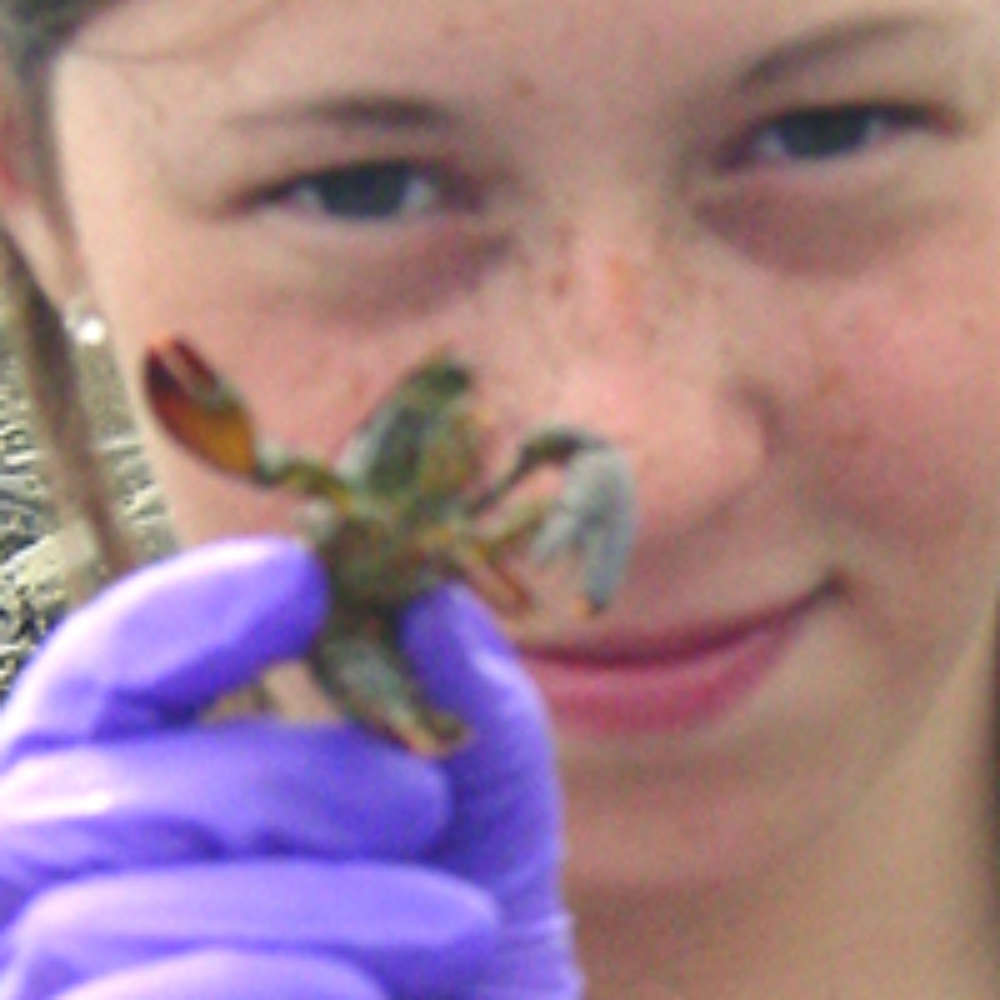 Girl showing small lobster to the camera