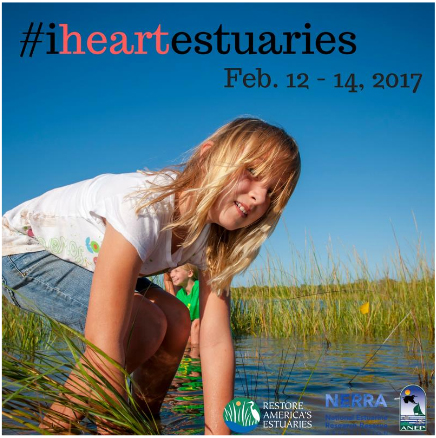 I Heart Estuaries campaign graphic, 2017
