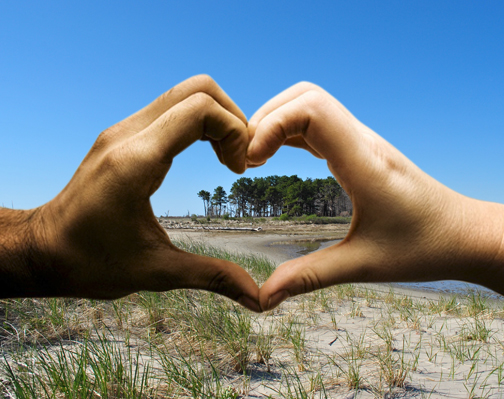 I Heart Estuaries image