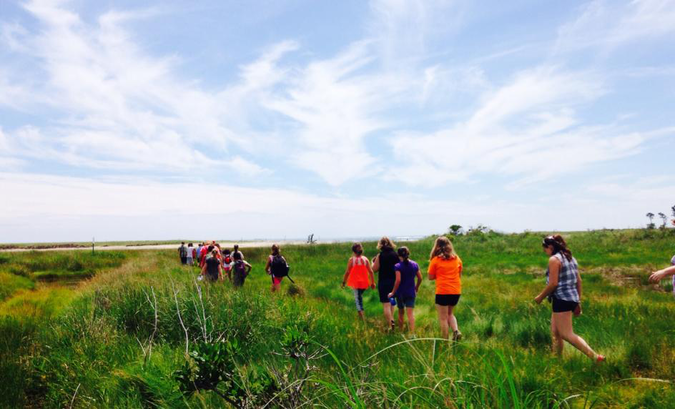 Students walk out onto the Little River estuary salt marsh