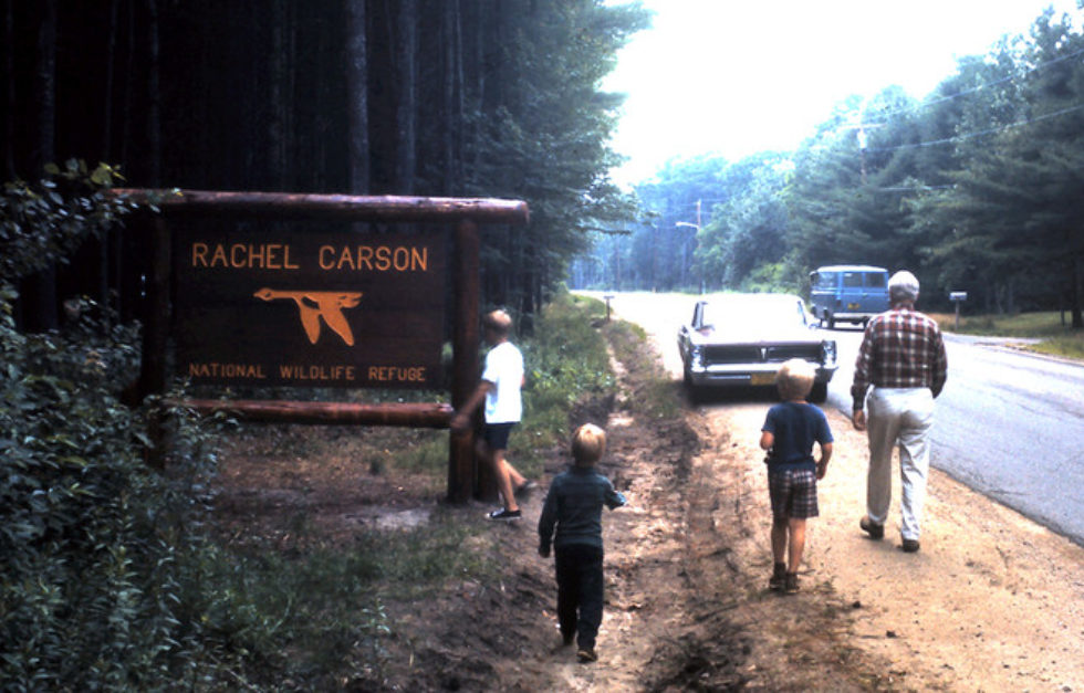 1970 Aug 368 Rachelcarson Edit