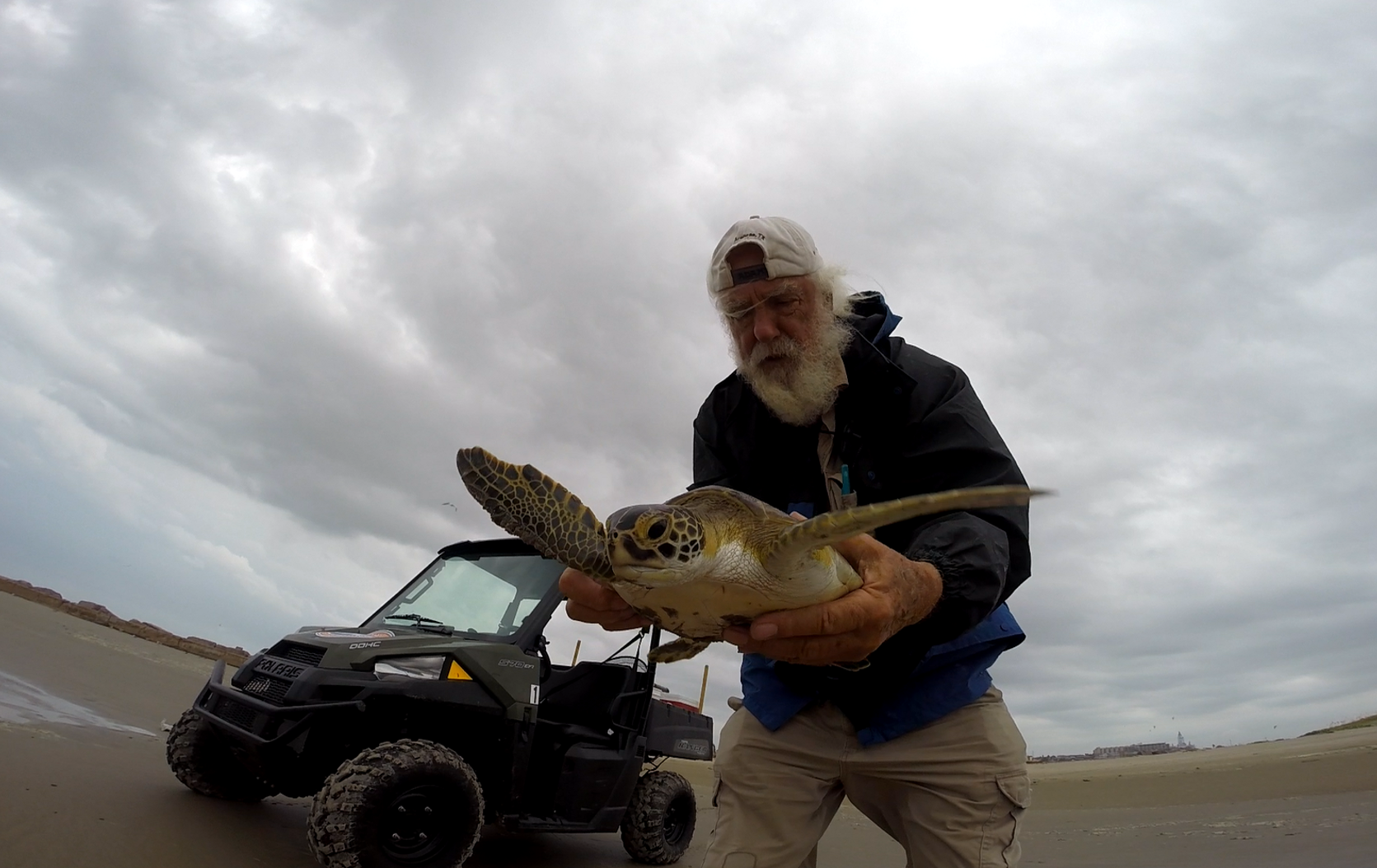 Tony Amos handles a sea turtle during a patrol on a Texas beach. Photo courtesy Mission-Aransas NERR.