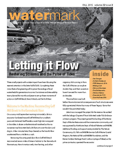 Cover from Watermark 32(2): Fall 2015. Letting it Flow, restoring streams and the pulse of tides