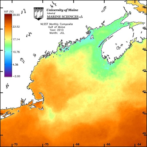 Gulf of Maine Sea Surface Temperature composite image for July 2013 by UMaine School of Marine Sciences
