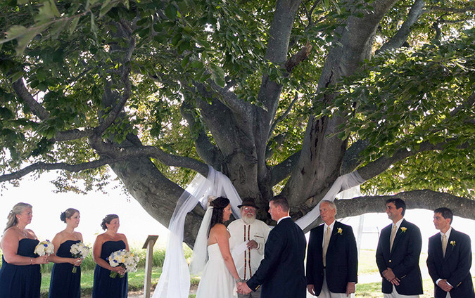 A ceremony under the copper beech. Beth Talbot weds John Geary in 2012.
